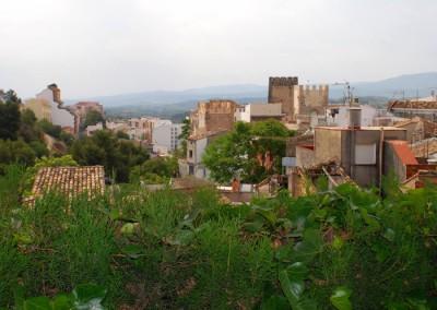 Vista desde la terraza y jardines